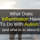 Image hands holding puzzle pieces: text: What Does Inflammation Have To Do With Autism (and what to do about it)