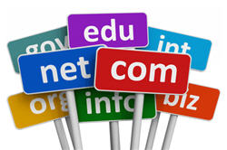 domain name purchase