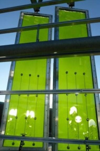 alga-haz-fotobioreaktor