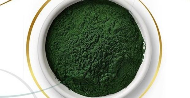 micro-alga-kapszulazva