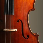 orchestral-stringspng__600x600_q85_crop_subsampling-2_upscale