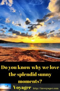 Do you know why we love the splendid sunny moments