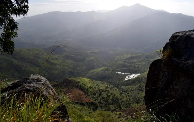 Kodaikanal Elephant Valley