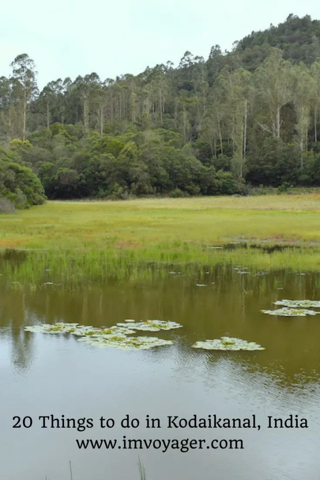20 Things To Do In Kodaikanal Best Places To Visit And