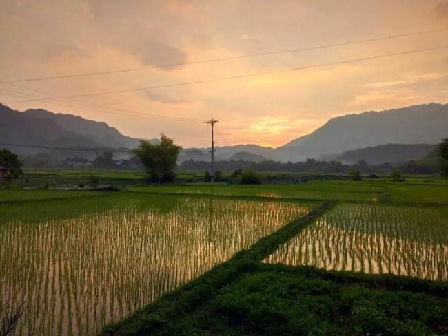 Vietnam Insider Travel Tips