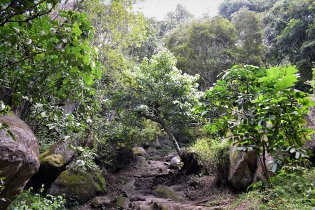 Edakkal Caves in Wayanad