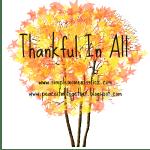 Thankful – 2013