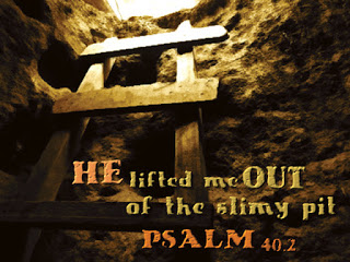 Image result for psalm 23 out of the pits