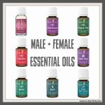 Essential Oils: Male + Female Health
