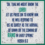 Hosea 6:3 – Downpour of Rain #122