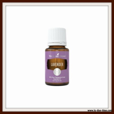 Lavender YL Essential Oil