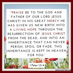 1 Peter 1 - In Due Time Blog1