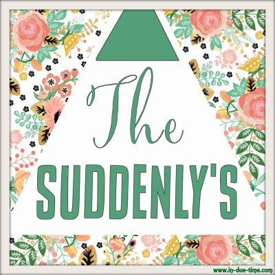 The Suddenly's - In Due Time Blog
