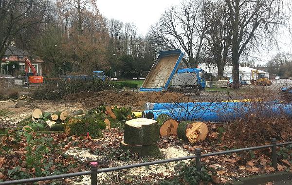 Am Eingang zum Forumpark vor der Bücherei wurden weitere Bäume gefällt