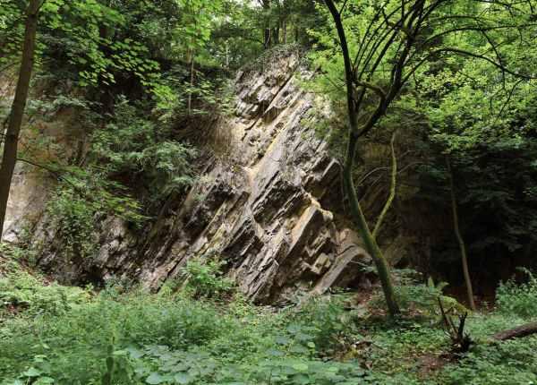 Im neuen Teil des privaten Friedhofs von Pütz-Roth in Bergisch Gladbach befindet sich auch ein alter Steinbruch. Hier sind gemeinsame Bestattungen von Mensch und Tier möglich