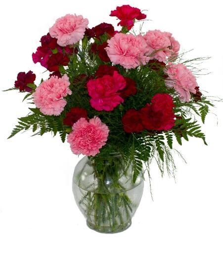 Carnation vase sympathy flowers