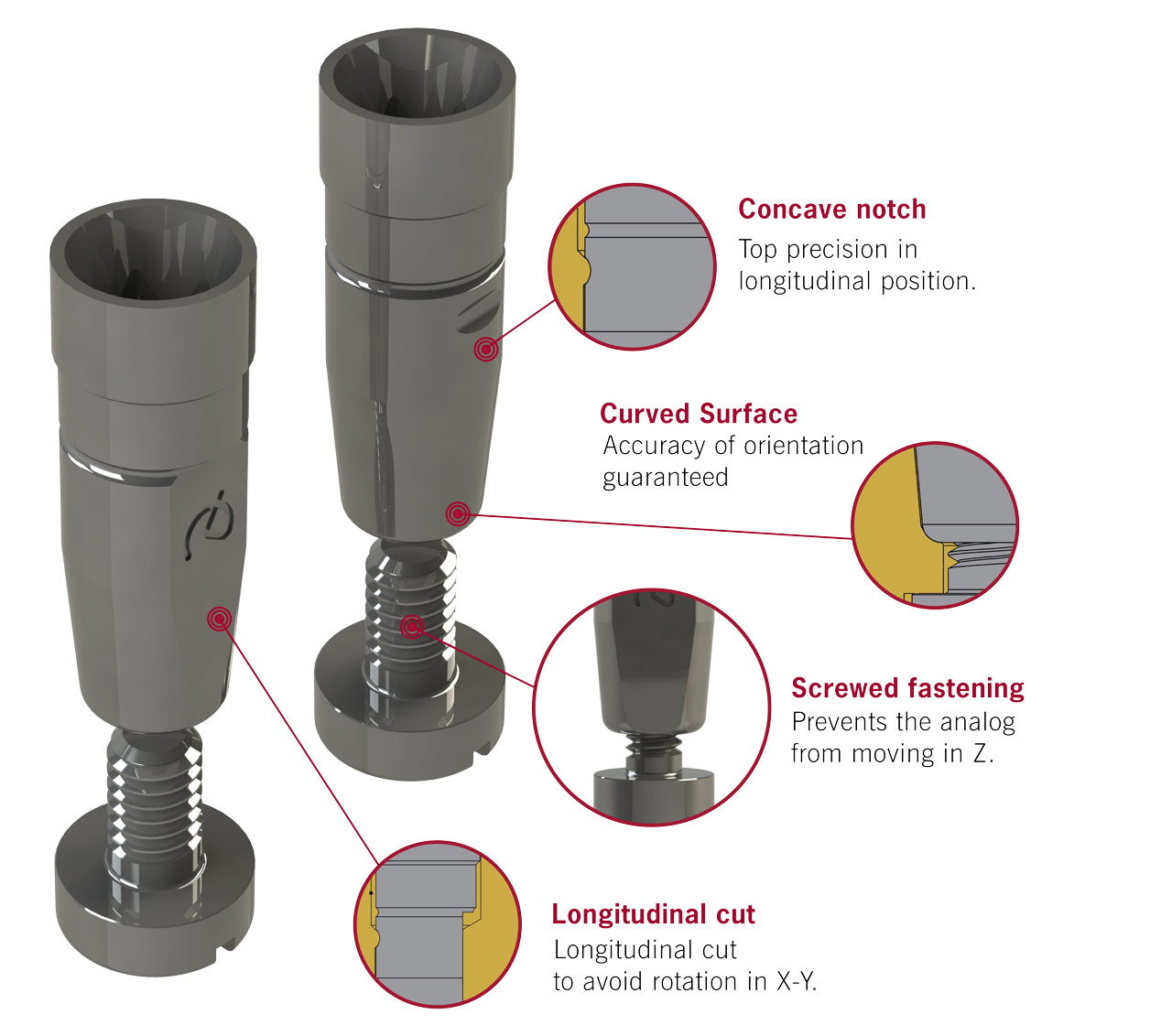 Dynamic Abutment Solutions In