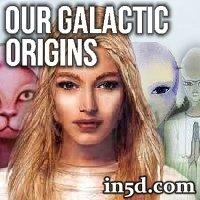 Our Galactic Origins