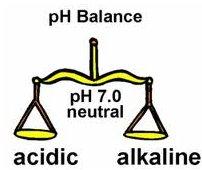 List of Alkaline Foods - The pH Balanced Diet | in5d.com