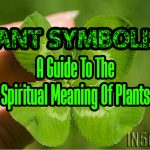 Plant Symbolism – A Guide To The Spiritual Meaning Of Plants