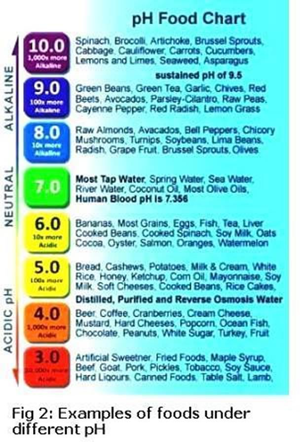Alkaline Diet List Of Foods To Eat