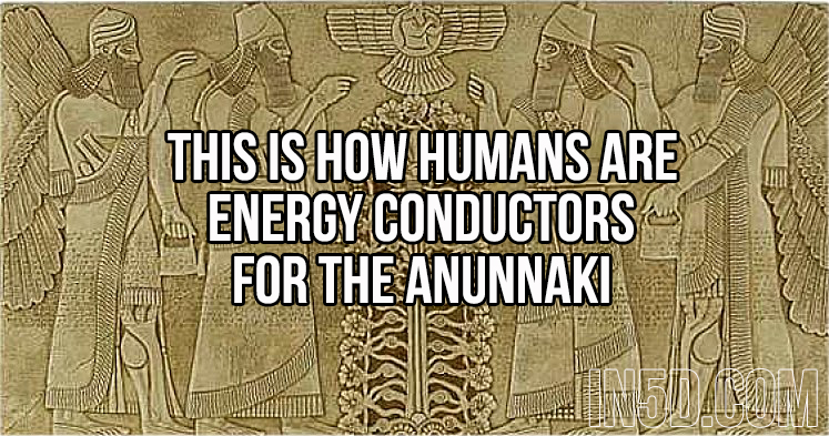 This Is How Humans Are Energy Conductors For The Anunnaki 1111sdgsdfhadfsjg