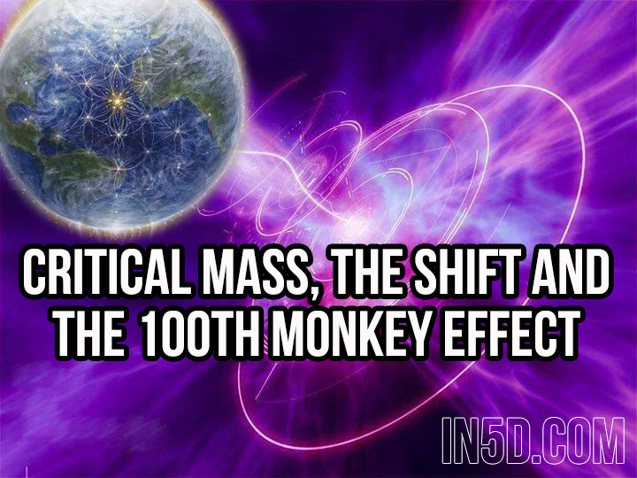 Critical Mass, The Shift And The Hundredth Monkey Effect  in5d in 5d in5d.com www.in5d.com http://in5d.com/ body mind soul spirit BodyMindSoulSpirit.com http://bodymindsoulspirit.com/