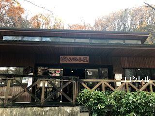 ピトンの小屋