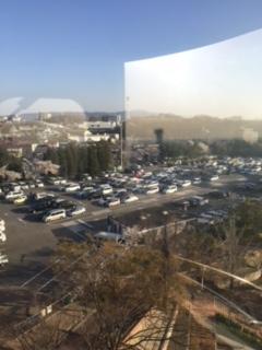 ひらかたパークの駐車場の混雑の様子