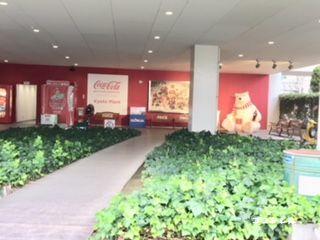 マジカルエコラのファクトリーツアーエコラ館入口