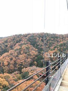 星のブランコの橋の上から撮った紅葉