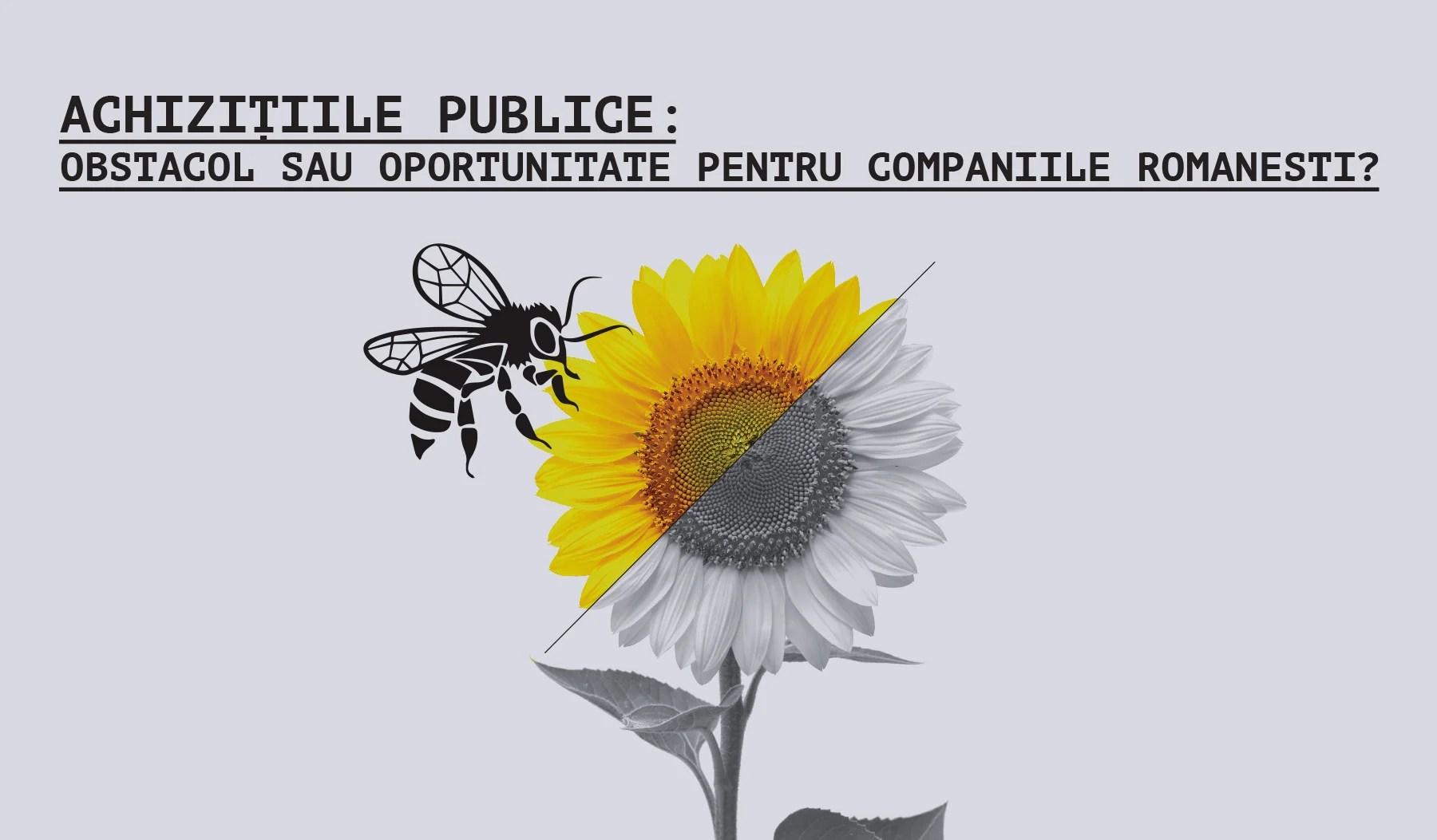 Achizițiile publice: obstacol sau oportunitate pentru companiile românești?