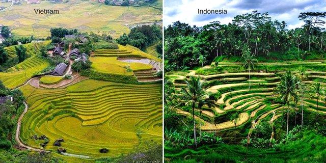 7 32 Ini Nih 10 Bukti Jika Kebiasaan dan Tempat di Vietnam Mirip Seperti di Indonesia. Mau Liat