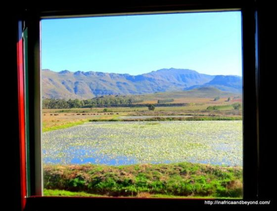 Window view from Rovos Rail