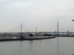 中川中景色