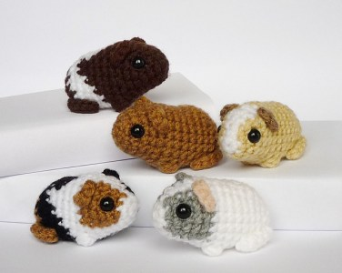 http://www.ravelry.com/patterns/library/newborn-guinea-pig