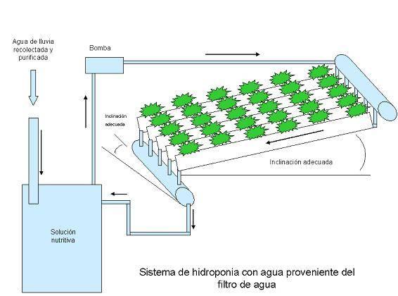 ideas-construir-jardines-hidroponicos-ejemplo