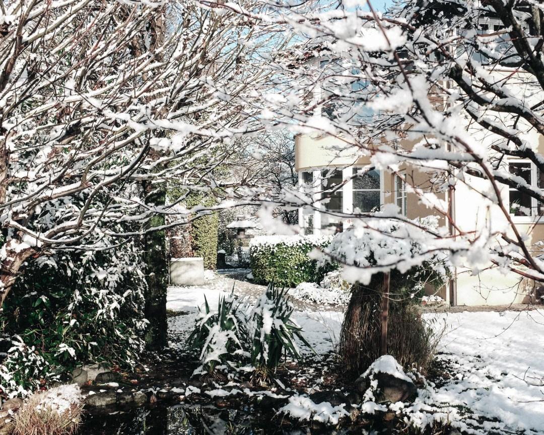 ina stil inastil advent keksebacken garten schnee wintergarten gartenteich gartenliebe winterzauber winterwonderland christmastime weihnachtszeitDSCF0679