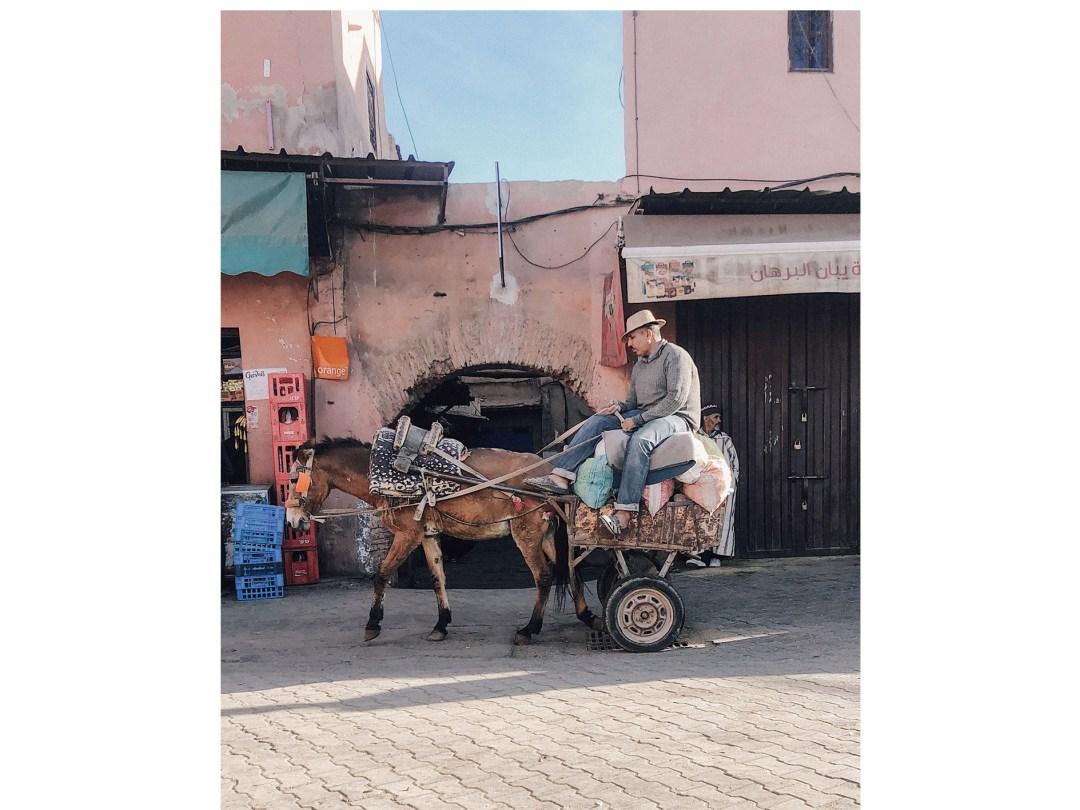 marrakesch 15