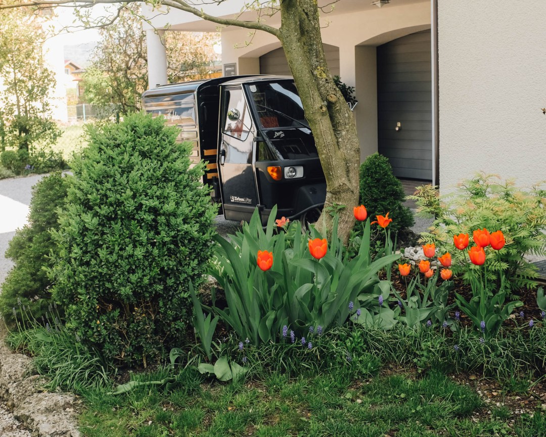 Inastil, Frühling2020, Raumduft, Raumspray, Wäschespray, Zirbenlüfter, Garten, Frühlingsgarten, Tulpen, Gärtner, Gartentipps, Ü50Blogger, Gartenliebe-10