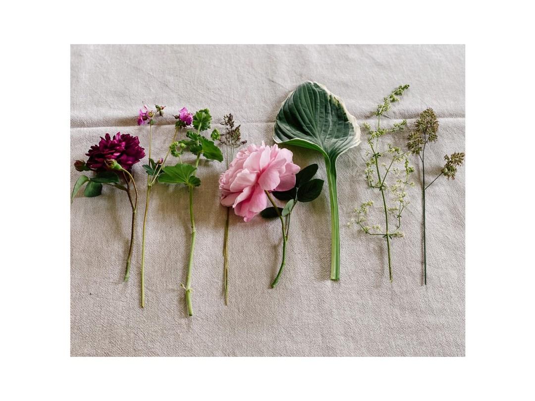 Blumen10