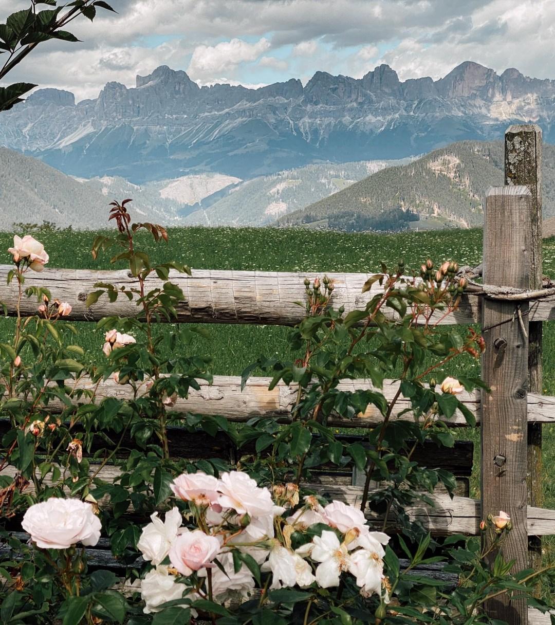 Inastil, Südtirol, Vitalpinahotels, Pflösl, Deutschnofen, Eggental, Latemar, Dolomiten, Travelblogger, Ü50Blogger, Urlaub, Ü50Lifestyle, Reiseblogger, Ü50Reisen-21