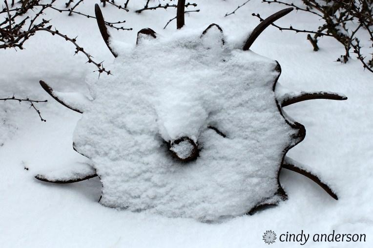 Winter_Art.jpg