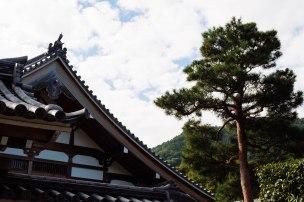 japan_trip_20161017_iyn_031