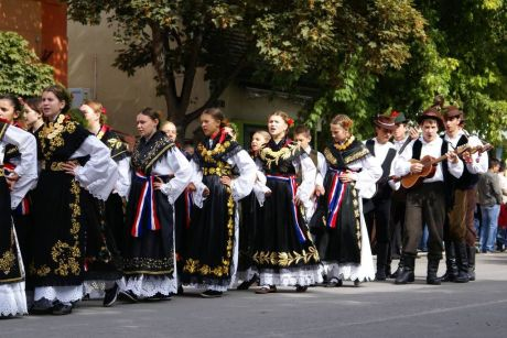 Vinkovac Autumns 2013 14