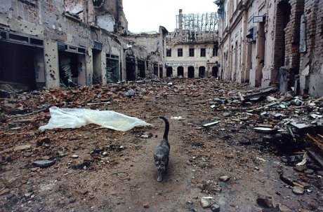 Vukovar, Croatia 1991 A battered city