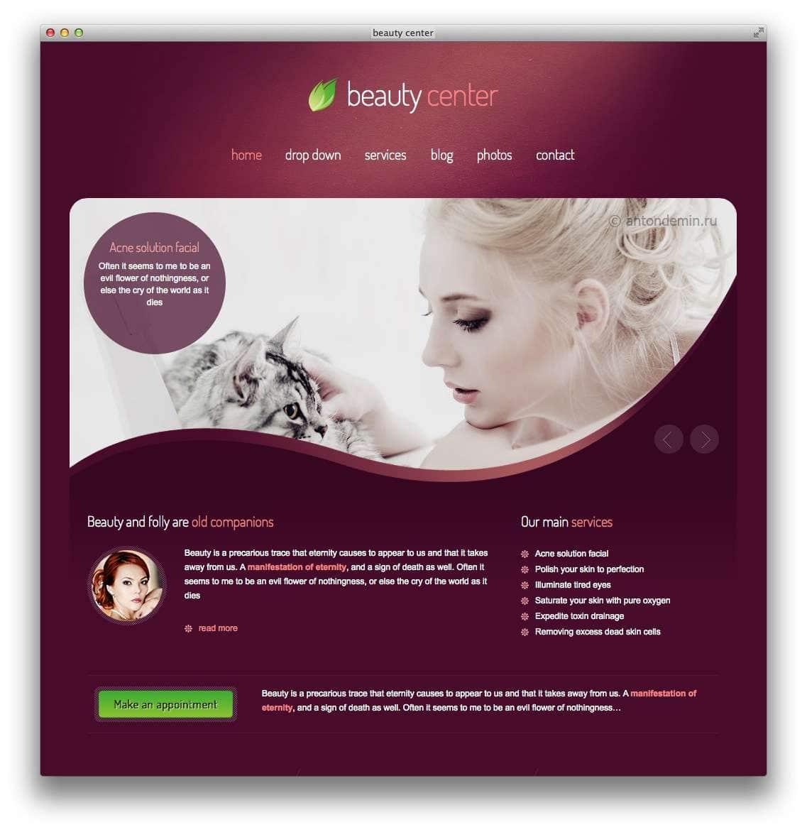 WordPress для салона красоты9