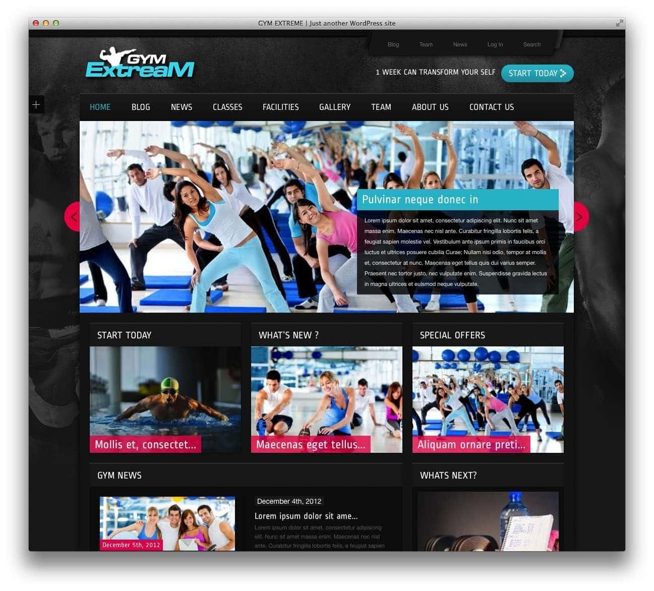 WordPress шаблоны – Фитнес и спорт 12