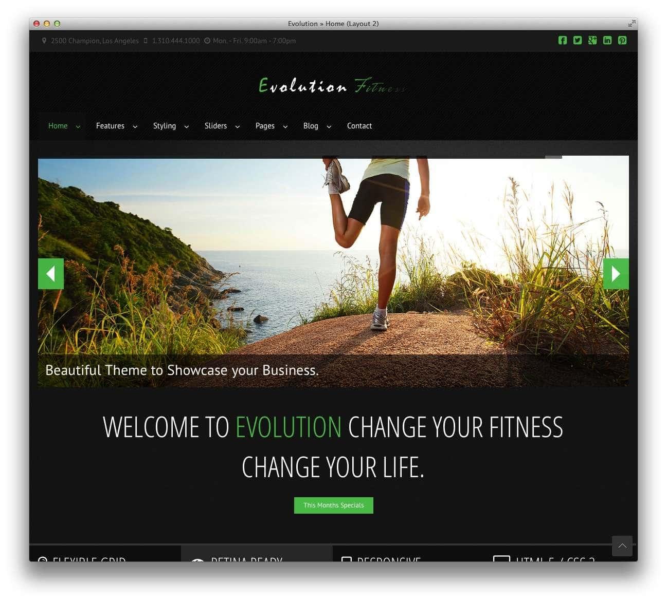 WordPress шаблоны – Фитнес и спорт 5