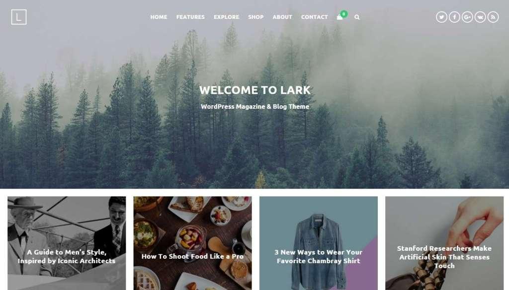 Wordpress blog премиум шаблоны для блога 2016